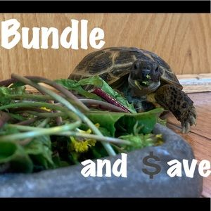 Bundle and $ave